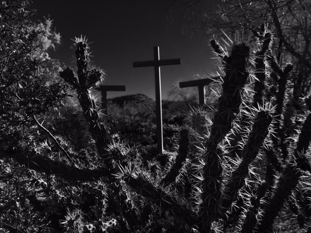 cross and cactus