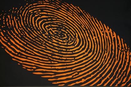 fingerprint201